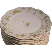Haviland Limoges  The Princess 10 Luncheon Plates Made In France