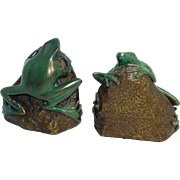 Bronze Frog Bookends