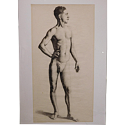 Male Nude Drawing