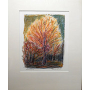Contemporary Oil Pastel Drawing / Tree Study