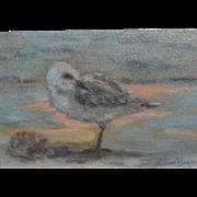 Coastal Seashore Sandpiper Bird Oil on Canvas Painting