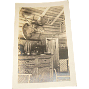 Vintage 1930's RPPC Moose & Cabin Interior Twig Furniture Adirondacks Photo