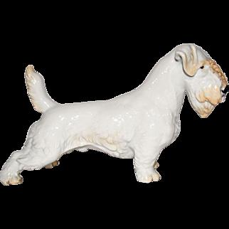 Rosenthal Germany Porcelain Dog Figurine: Sealyham #322 by T. Karner