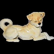 Nymphenburg Germany Pug Dog Figurine