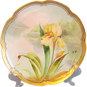 Haviland Limoges Signed Hand Painted Iris Plate
