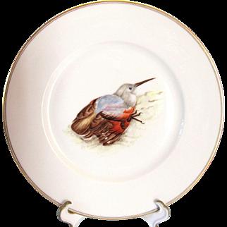 Four Hand Painted Bird Plates Au Vase Etrusque Louis Damon