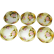 6 Unmarked RS Prussia or Germany Individual Size Berry Bowls Pink Rose Decoration