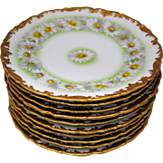 Set of 10 T&V Limoges France Daisy Chain 8 3/8 inch Salad or Dessert Plates