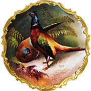 Hand Painted Limoges France Game Bird Plate with Male & Female Pheasant