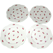 4 Shelley Rosebud Dainty Shape 8 inch Salad or Dessert Plates