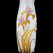 Mont Joye French Cameo Art Glass Vase Iris Decoration 14 inches Tall