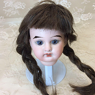Antique Bisque Tiny Dep Head & Human Hair Wig