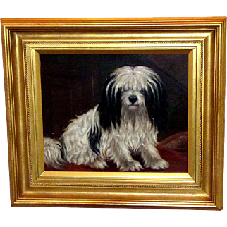 Portrait of a Havanese Dog by A.G. Walker