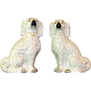 Pair of Large and Impressive Early Victorian Staffordshire Comforter Spaniels