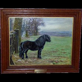 "Portrait of ""Dibblitz,"" the Champion Pony, by William Luker, Jr."