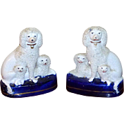 Pair of Early Victorian Staffordshire Poodle Groups with Puppies on Blue Enameled Bases
