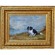 Portrait of a Border Collie among the Highlands, Dated 1886