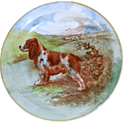 Royal Doulton Cabinet Plate Depicting a Spaniel in a Landscape