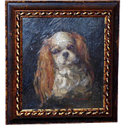 Edwardian Portrait of a Cavalier King Charles Spaniel