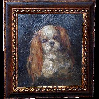 Edwardian Portrait of a Cavalier King Charles Spaniel