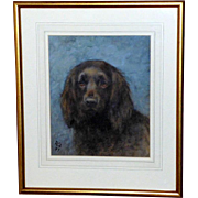 Watercolor Portrait of a Spaniel, by Frances Fairman