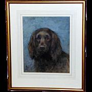 Watercolor Portrait of a Spaniel, by Frances Fairman