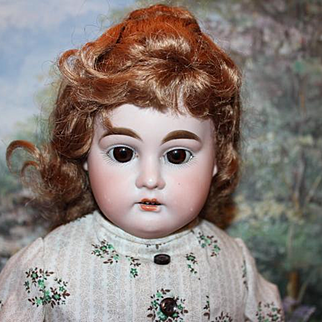 """German Antique """"Columbia"""" mold doll, 19 1/2"""" tall, Sweet face on her. Antique Shoulderhead on replaced cotton body, new hands, cape and hat."""
