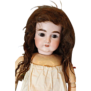"""Nice thick human hair antique doll wig, dark brown in color, 12 1/2"""" head circumference. Needs work! Very Thick and hand tied wefting."""