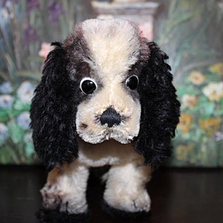 """Steiff mohair Cocker Spaniel dog in black and white, red collar and part of the metal Steiff pin in ear. 9"""" long X 7"""" tall in size. Great condition!"""