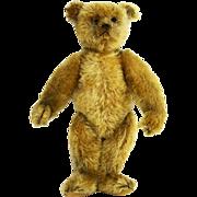 Antique Steiff Teddy Bear ca1908