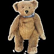 Antique Early Ideal Teddy Bear ca1910