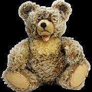 "Vintage Steiff Zotty Bear 20"""