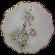 Carl Tielsch CT Altwasser Austria HP Pink Blossoms Plate Signed