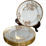 Gorgeous Gold Encrusted Golden Chrysanthemum Hammersley #5030 Dinner Plate