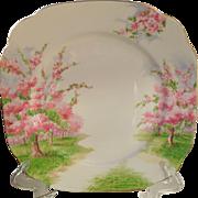 """Royal Albert Blossom Time Spring Green Grass Square Dinner Plate 9 5/8"""" 1936"""
