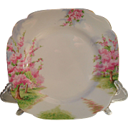 """Royal Albert Pink Blossom Time Spring Green Grass Square Salad Plate 7 3/4"""" 1936"""