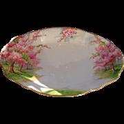 Royal Albert Pink Blossom Time Spring Green Grass Serving Dish 1936