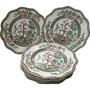 Set of Six Early Coalport Indian Tree of Life Scalloped Dessert Plates 1890-1920