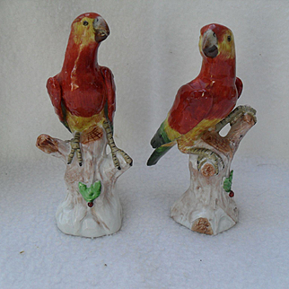 Diminutive Pair of Dresden Germany Macaw Parrots Perched on Stumps