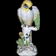 """Vintage Limbach German Porcelain Parrot 13"""""""