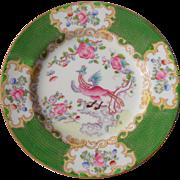 "Mintons Green Cockatrice Bread Plate 6"" Globe Backstamp 4863"