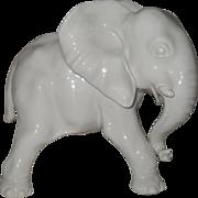 Nymphenburg Blanc de Chine Elephant Figurine 656