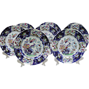Mason's Ironstone Multicolored Cockatrice Bird and Flower Dinner Plate Set of 8 C902