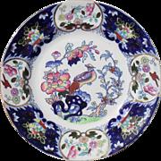 Mason's Ironstone Multicolored Cockatrice Bird and Flower Dinner Plate C902