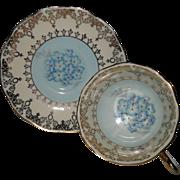 Vintage Royal Albert Fern Lea Blue Silver Trim Teacup and Saucer