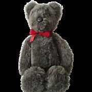 Vintage Grey Bear