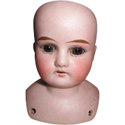 Antique Armand Marseille Mable Head For Your Doll