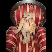 Vintage Velvet Bear