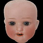 Heubach-Koppelsdorf 300-9/0 Doll Head