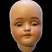 Antique Simon & Halbig Doll Head